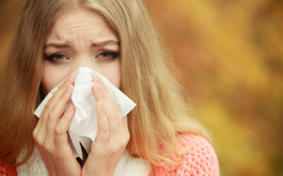 Foods to fight colds